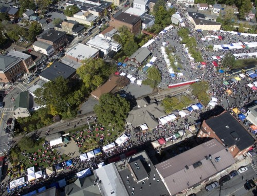 Birds-Eye View of Applefest